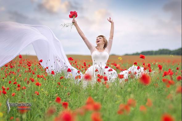 Свадебные фото на море в Одессе, фото в Оперном театре и на маковом поле - фото №40