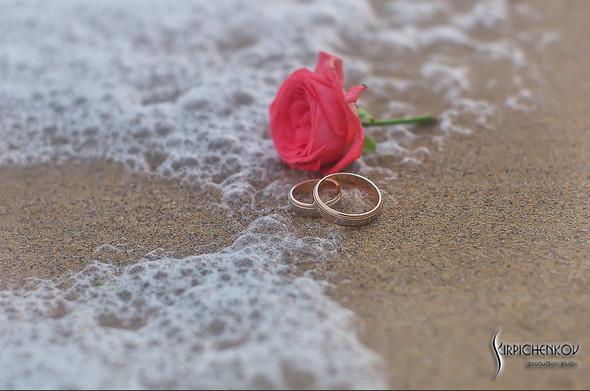 Свадебные фото на море в Одессе, фото в Оперном театре и на маковом поле - фото №56