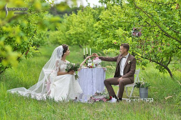 Свадебные фото в яблочном саду, г. Чернигов - фото №11