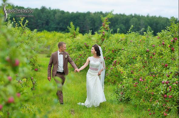 Свадебные фото в яблочном саду, г. Чернигов - фото №24