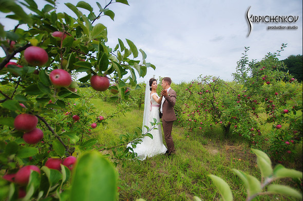 Свадебные фото в яблочном саду, г. Чернигов - фото №22