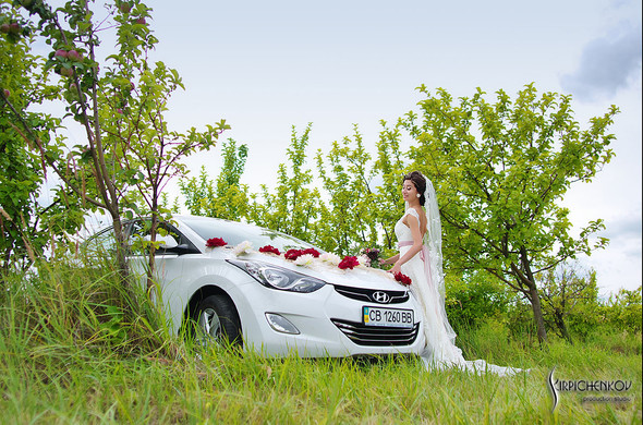Свадебные фото в яблочном саду, г. Чернигов - фото №18