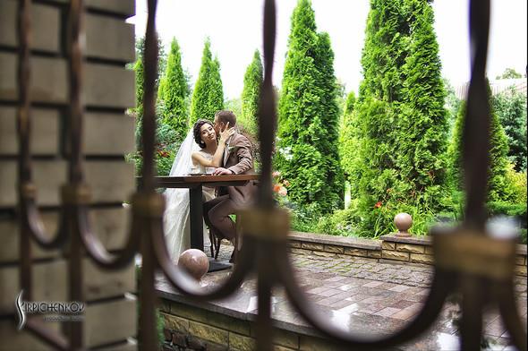 Свадебные фото в яблочном саду, г. Чернигов - фото №38