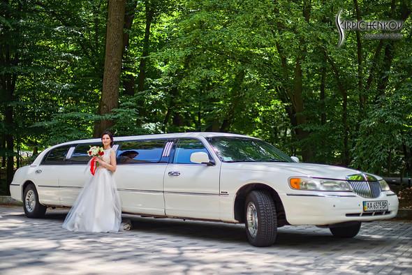 Свадьба на природе возле частного дома с выездной церемонией - фото №31