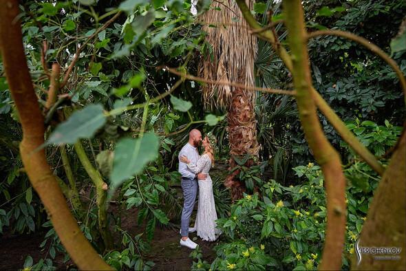 Свадебные фото в Оранжерее в Киеве, студийная сьемка в фотостудии Счастье - фото №14
