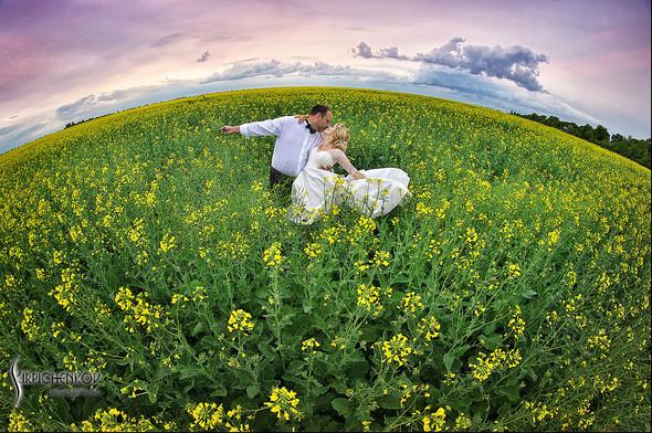 Свадебные фото на море в Одессе, фото в Оперном театре и на маковом поле - фото №26