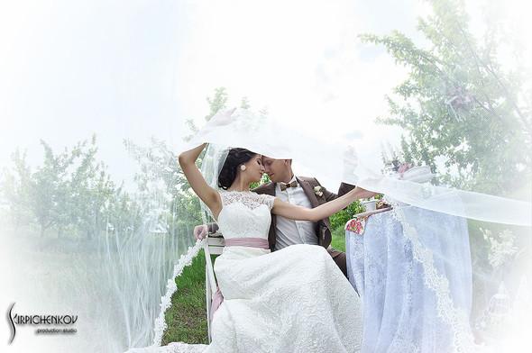 Свадебные фото в яблочном саду, г. Чернигов - фото №16