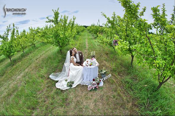 Свадебные фото в яблочном саду, г. Чернигов - фото №15