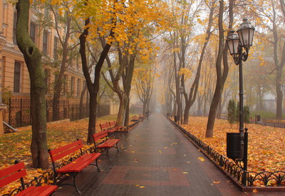 Городской Сад - место для фотосессии в Одессе - портфолио 2