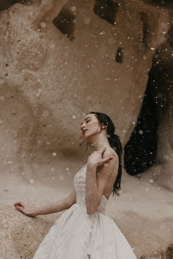 Anastasia& Farzam - фото №88