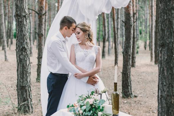 Ты мой мир. Свадьба Маргариты и Владислава - фото №15