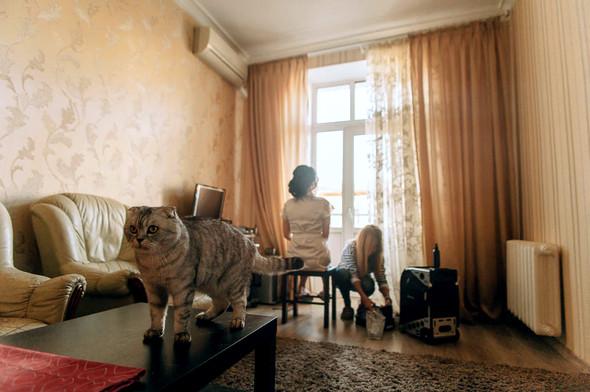 Алиса и Виталик  - фото №10