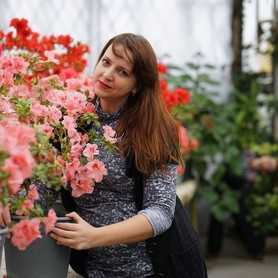 Видеограф Ольга Литвинова