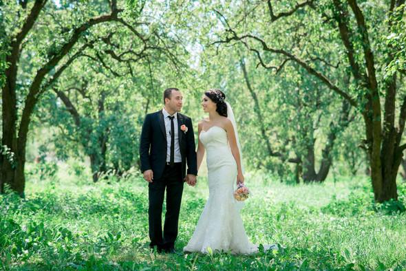 Алена и Николай - фото №8