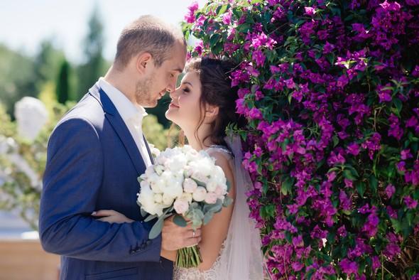 Володимир та Вікторія - ніжне весілля під гаслом SolodkoWedding - фото №5