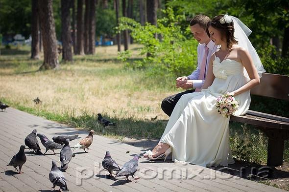 Свадебные фотосессии - фото №23