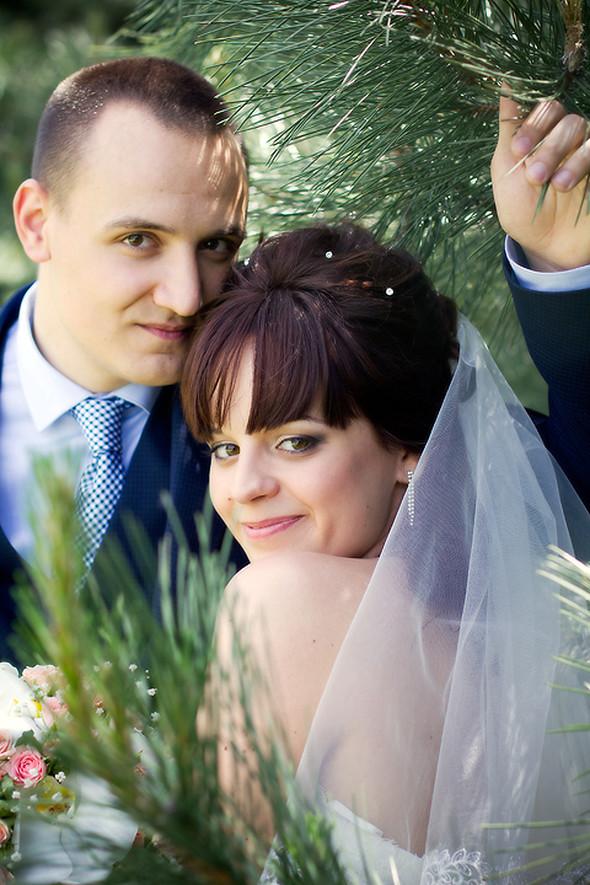 Свадебные фотосессии - фото №17