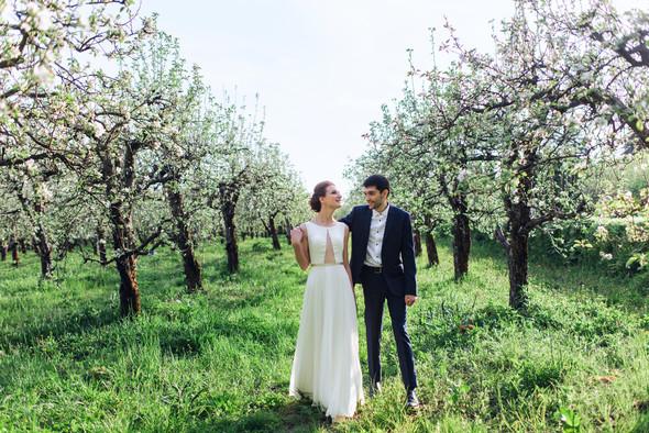 WeddingDay - фото №4