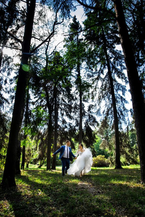 Вита + Дима. Свадьба - фото №84