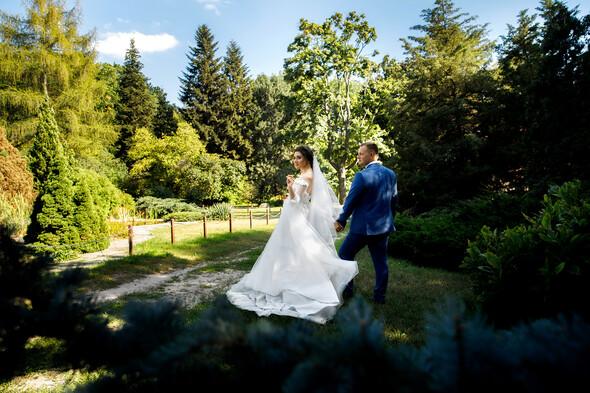 Вита + Дима. Свадьба - фото №75