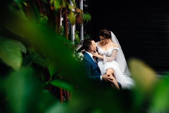 Вита + Дима. Свадьба - фото №61