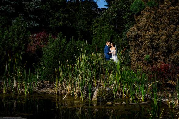 Вита + Дима. Свадьба - фото №94