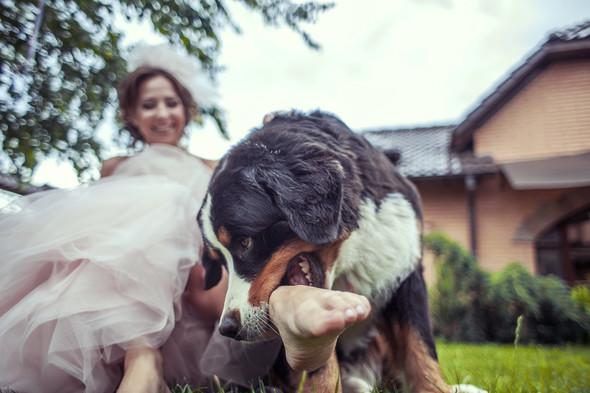 Wedding day Odessa/ Свадебный день Одесса / фотограф Артем Кулаксыз - фото №12