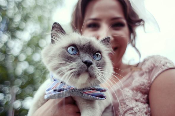 Wedding day Odessa/ Свадебный день Одесса / фотограф Артем Кулаксыз - фото №9