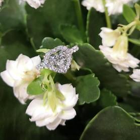 Prytula jewellery - обручальные кольца в Харькове - портфолио 2