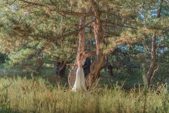 Алина+Иван - фото №57