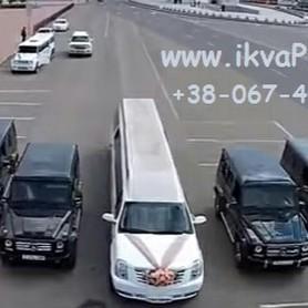 Лимузины Франковск - авто на свадьбу в Ивано-Франковске - портфолио 1