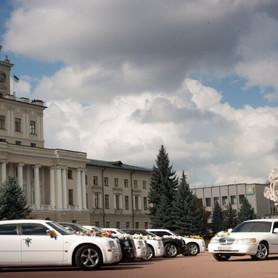Chrusler 300C - авто на свадьбу в Хмельницком - портфолио 5