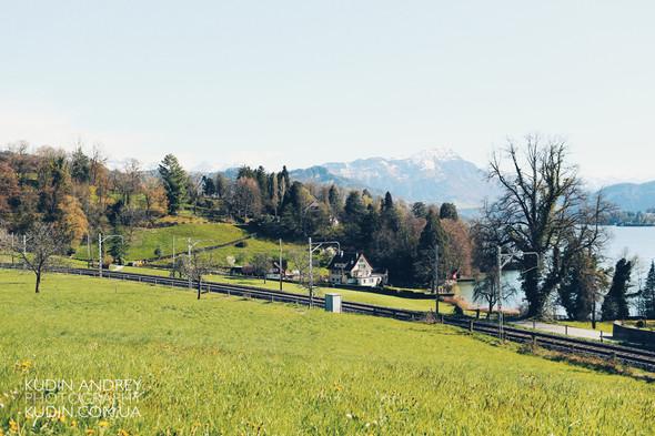Love Story in Luzern - фото №48