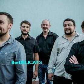 DELICATS (ДЕЛІКЕТС) - музыканты, dj в Житомире - портфолио 1