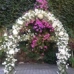 MY STYLE_Wedding - декоратор, флорист в Львове - фото 3