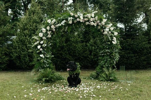 Балдёжная свадьба - фото №21