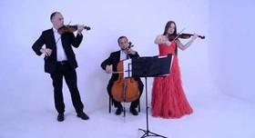 """Струнное трио """"Primavera"""" - музыканты, dj в Киеве - фото 1"""