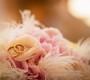 """Свадебное агентство """"Angel"""" - фото 12"""