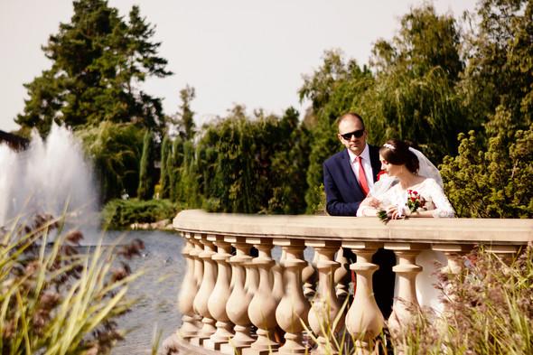 Свадьба 08,09,2019 - фото №10