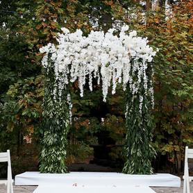 Eva Wedding Agency - свадебное агентство в Житомире - портфолио 5