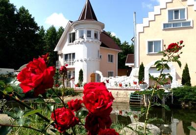Villa Rose (Вилла Роз Житомир) - фото 1