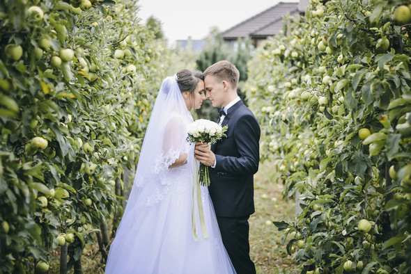 Wedding Vladimir and Catherine - фото №5