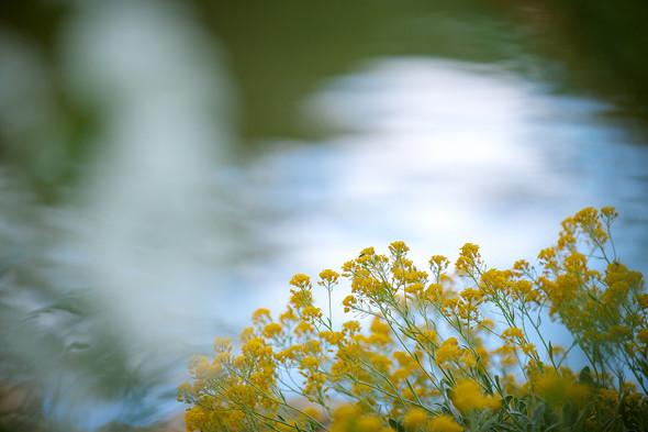 Весна для двоих - фото №13
