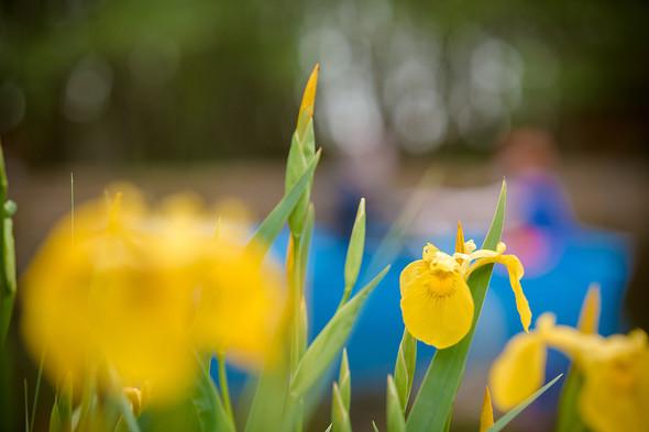 Весна для двоих - фото №19