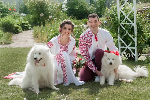 Олег та Дарина - фото №16