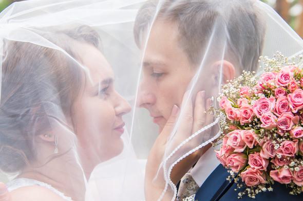 Свадьба 14.08.17 - фото №6