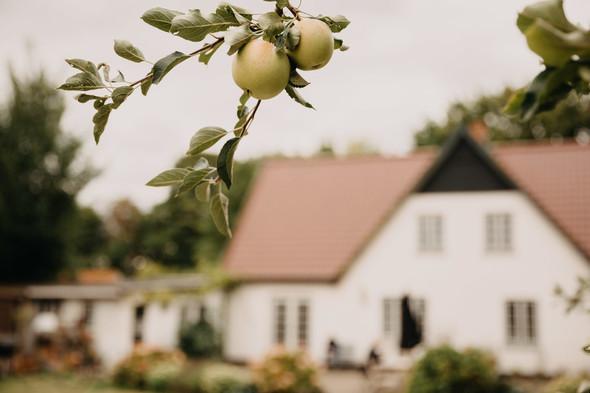 Атмосферная датская свадьба - фото №41