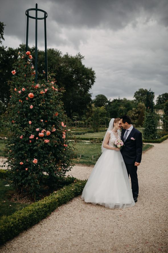 Уютная французская свадьба - фото №49