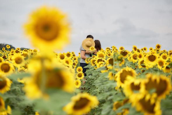 Любовь в Коростышеве - фото №8