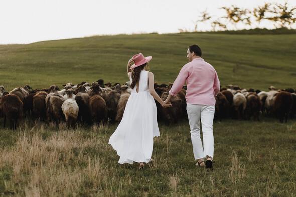 Sheepland lovestory - фото №32